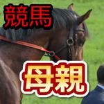 2015年12月19日中山・阪神・中京競馬場【新馬、未勝利限定】ー注目母親